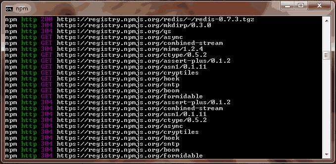 npm downloading required files