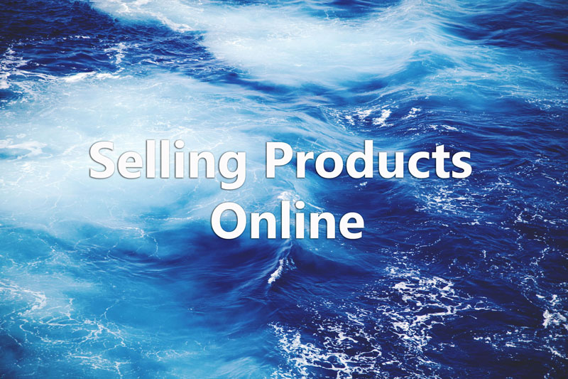 Earn from Selling Products Online