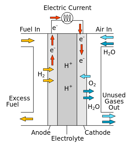 How Hydrogen Fuel Cell Works